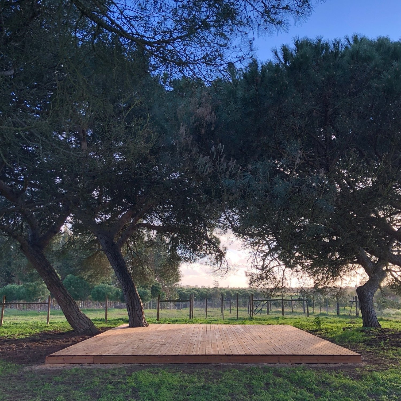 Cocoon+Portugal+|+Pine+Shala.jpg