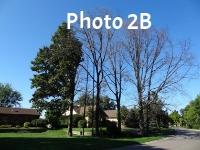 Photo 2B.jpg
