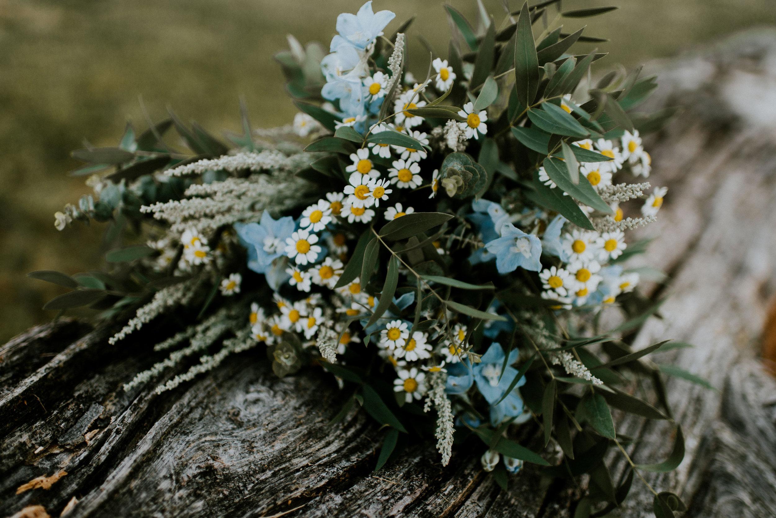 Wildflower-Field-Elopement-Vow-Renewal_Lisa+Chad_MJPHOTO-133.JPG