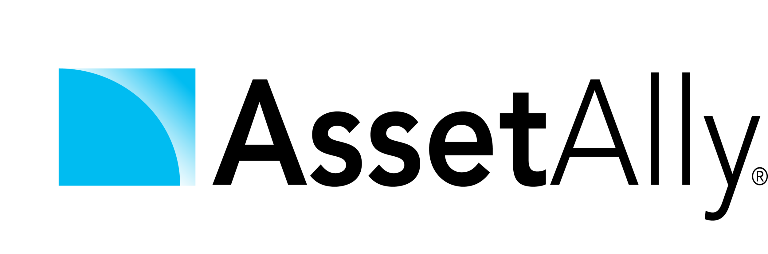 AssetAlly Black_Registered-Web.png