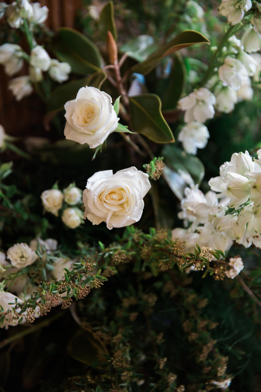 Daniels_Wedding-633.jpg