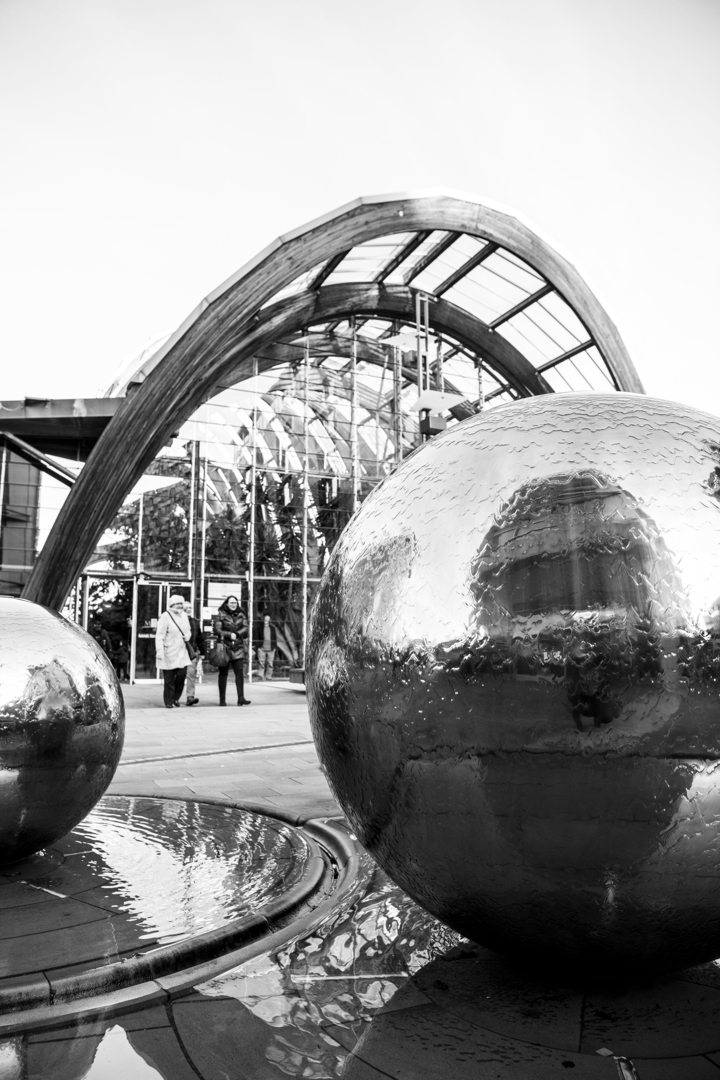 Sheffield Winter Gardens 3.jpg