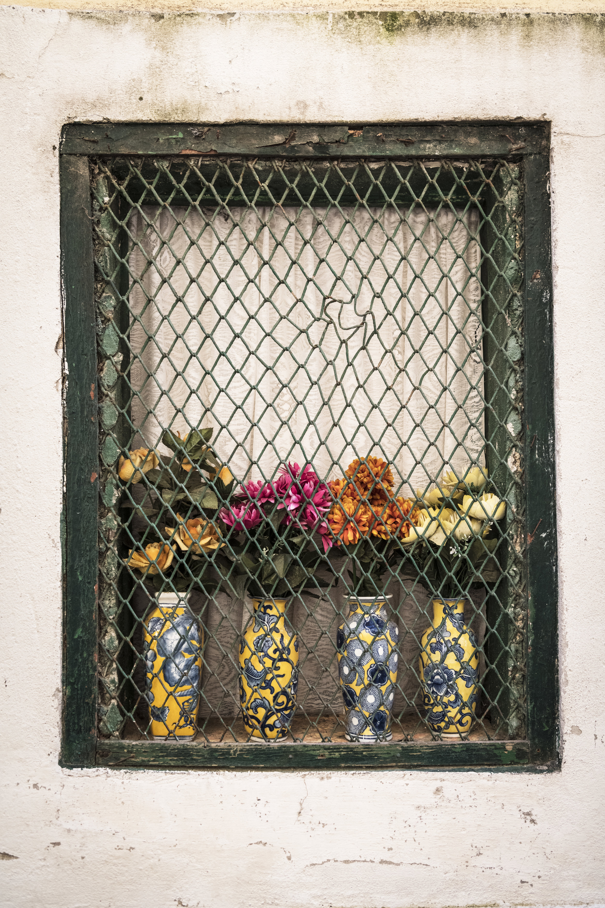 Alfama Flowers.jpg
