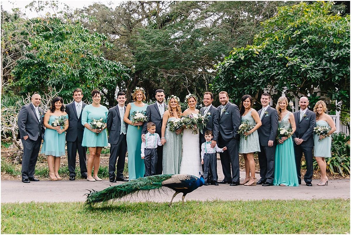 Peacock wedding party at Flamingo Gardens wedding