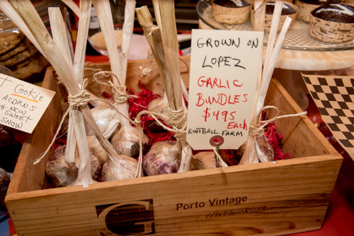 Lopez grown garlic