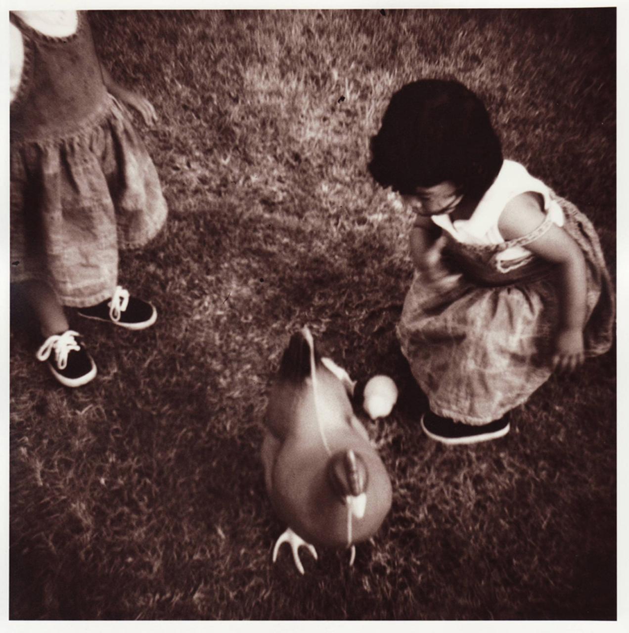AngarolaHsu:The Hen.jpg