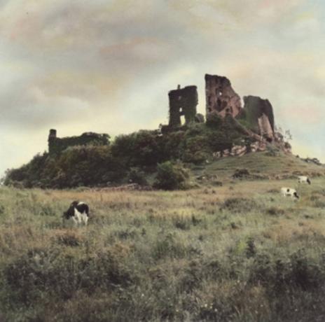 Carrigogunnel Castle