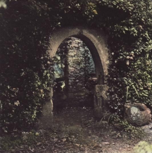 Hoare Castle webcopy.jpg