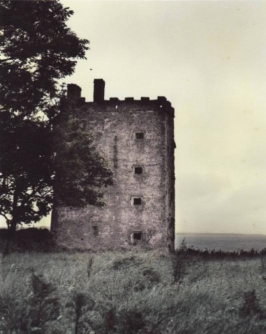 Carrigoholt Castle webcopy.jpg