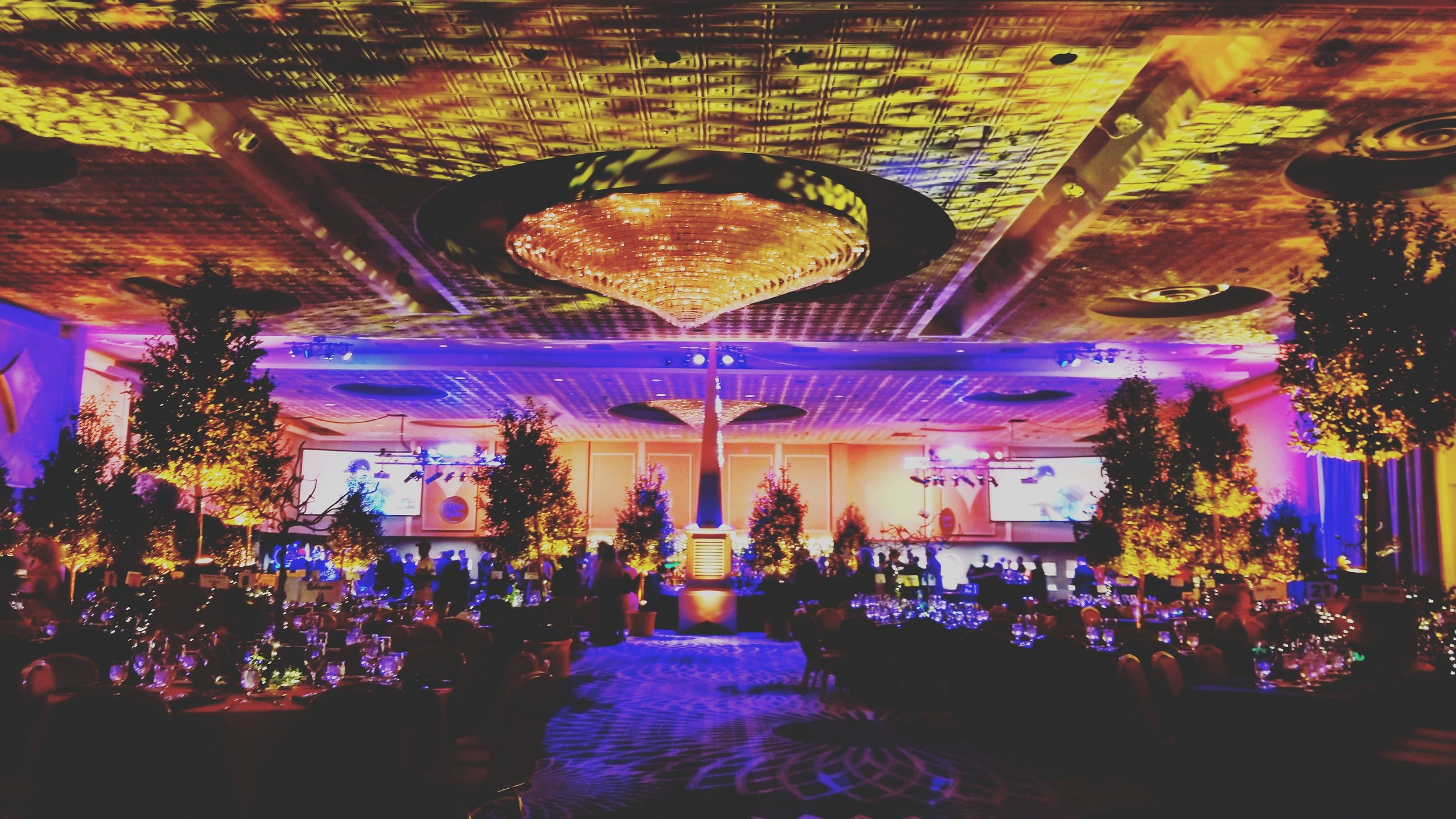 """SPECIAL OCCASIONS    Galas 