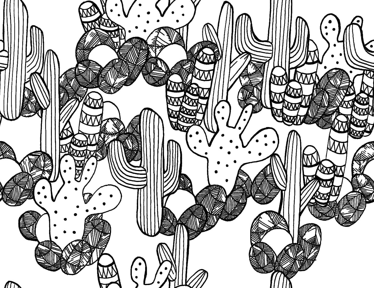 cactustest.jpg