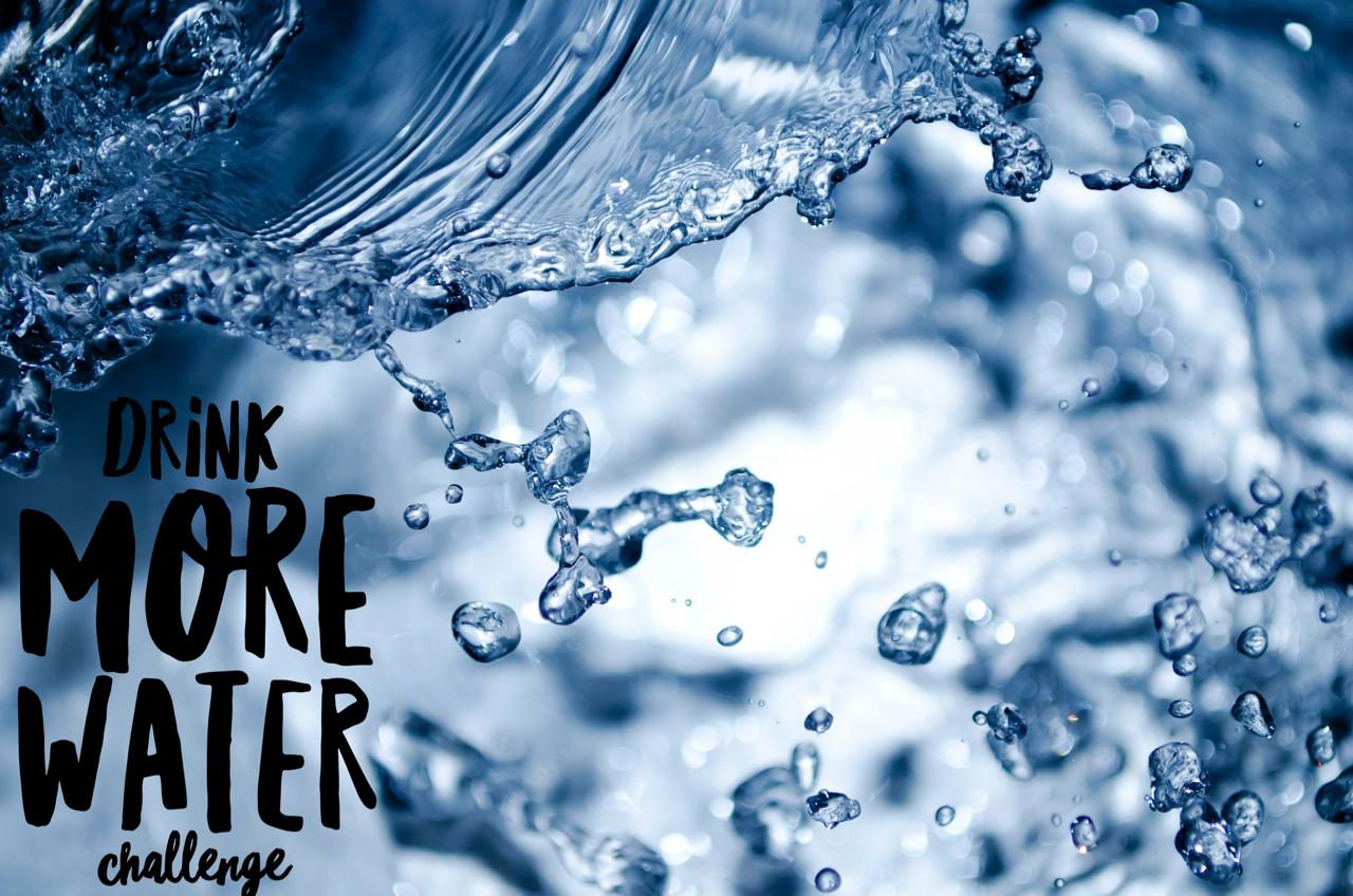 water health coaching aileen habit change