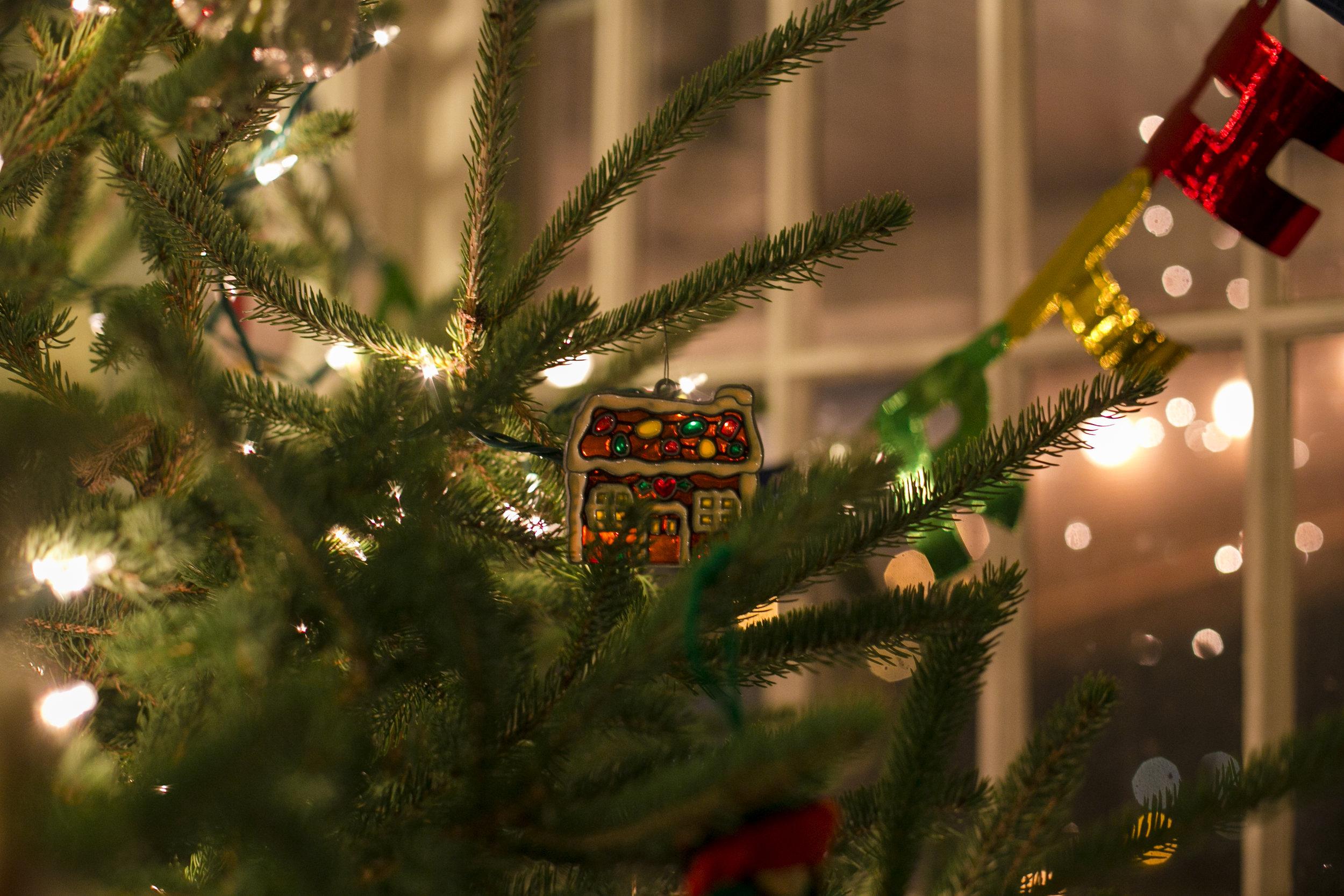 Christmas 2016-10.jpg