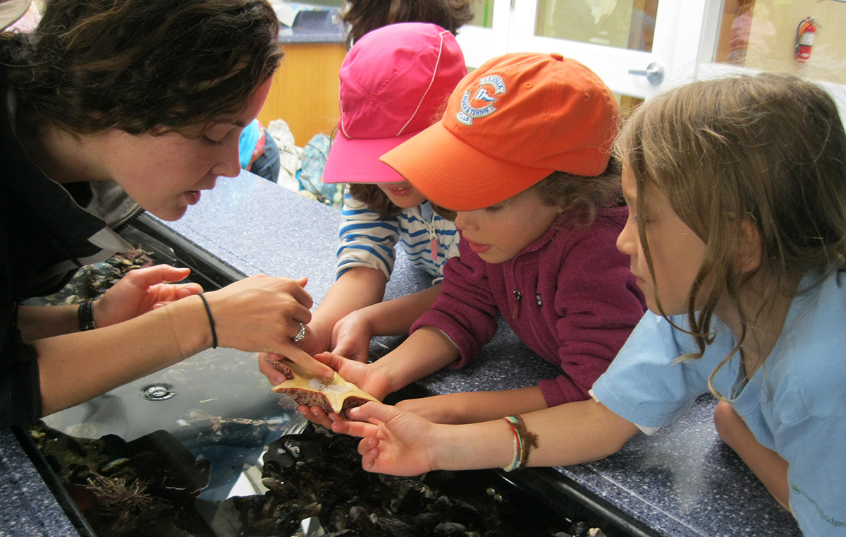 Coastal campers investigate the Marine lab and tide pool critters