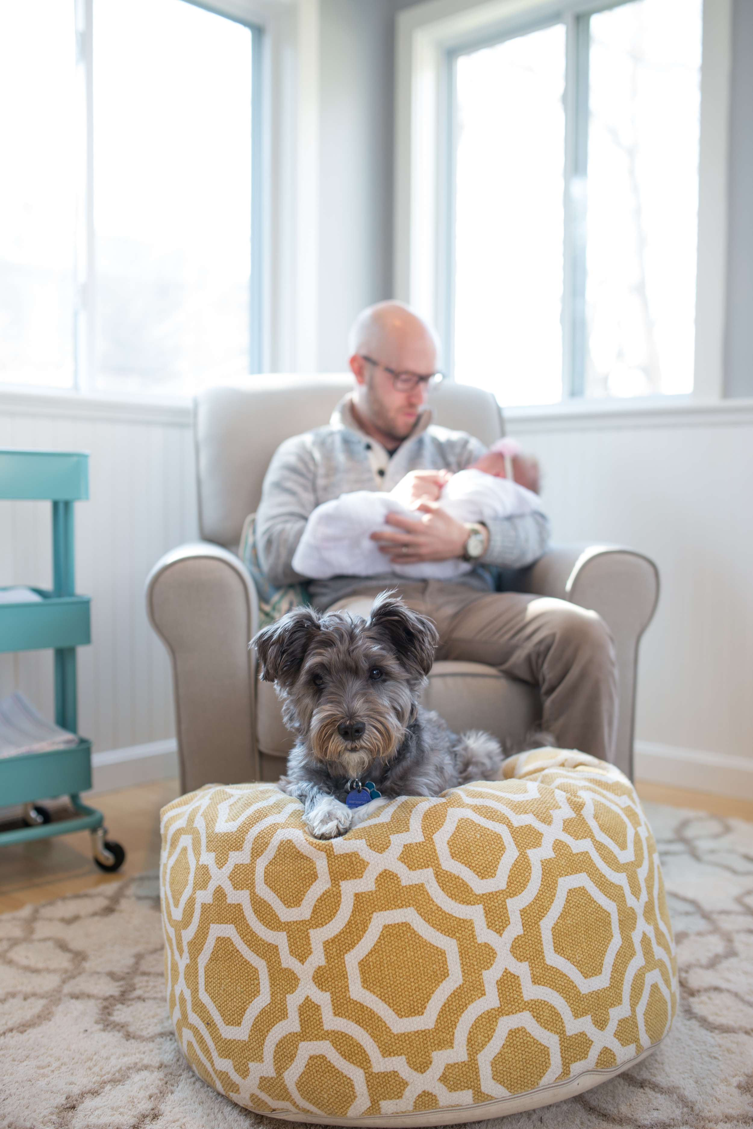 Dad holding Newborn while dog looks at the camera - Cape Cod Massachusetts