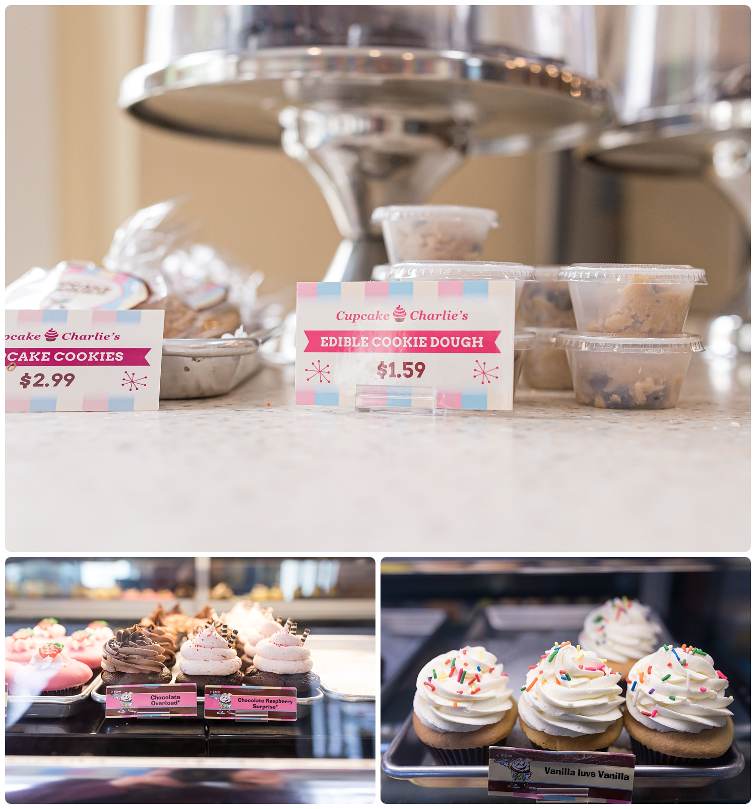 masschusetts-cupcake-charlies-photo.jpg