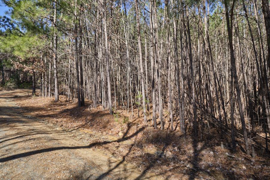 3_0001.jpgFab 54, Chapel Hill NC | Listing Agent: Kirsten Lambert of RED Collective