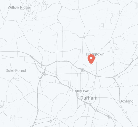 Elusively Electric , Durham NC | Listing Agent: Susan Ungerleider c/o RED Collective