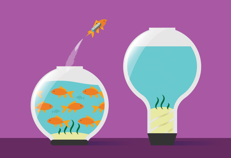 Fishbowls (Sized).jpg