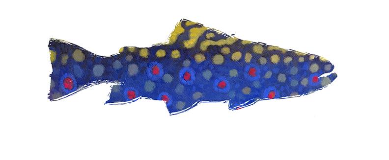 card trout.jpg