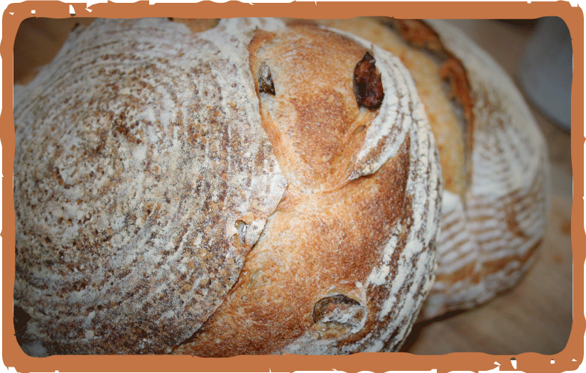 Hideaway-Bakery_website_Menu_BREAD_pic-Green-Olive-Loaf-v1.png