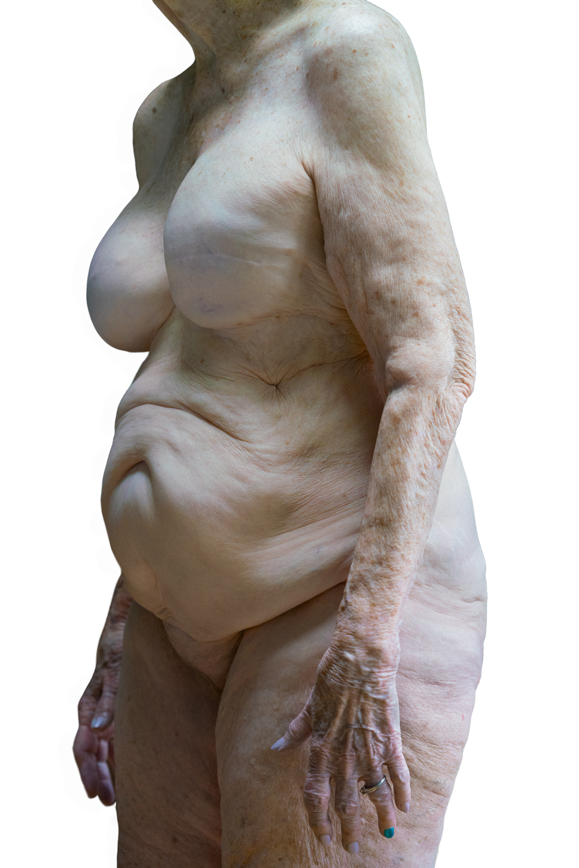 Nancy Hellebrand_Solo 4710 B.jpg