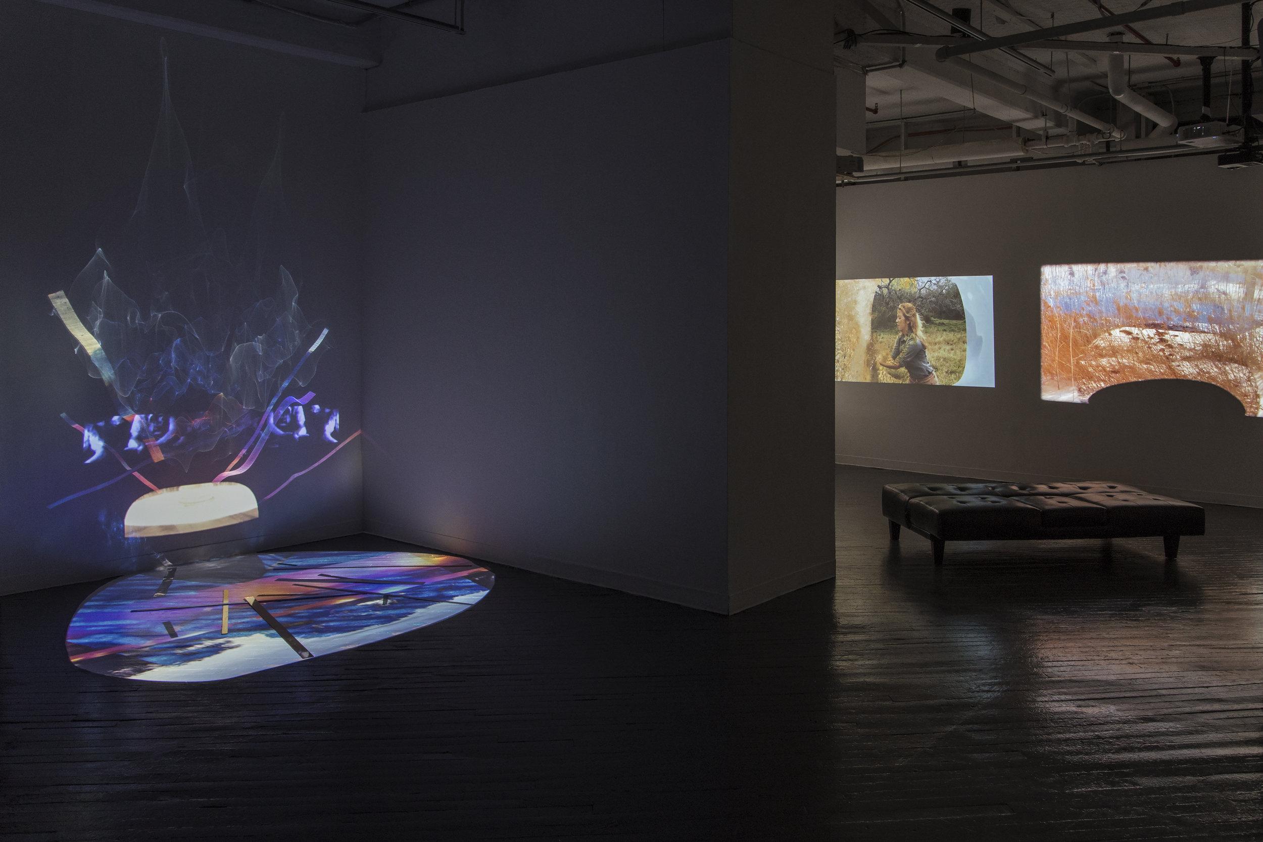 Tal Gilboa and Elizabeth Stehl Kleberg Whale installation