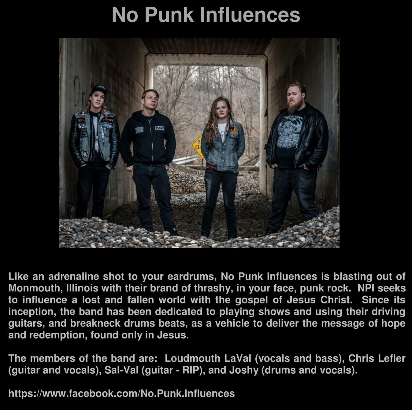 No Punk Influences 170104-1 crop.jpg