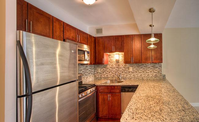 1350 Lakeshore - Upgraded Kitchenjpg.jpg