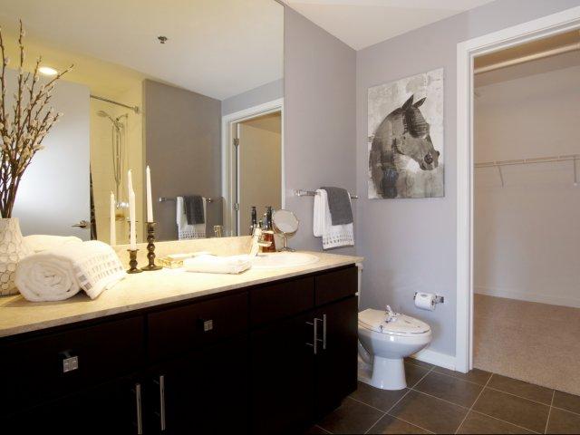 ENV - Bathroom w_ Closet.jpg