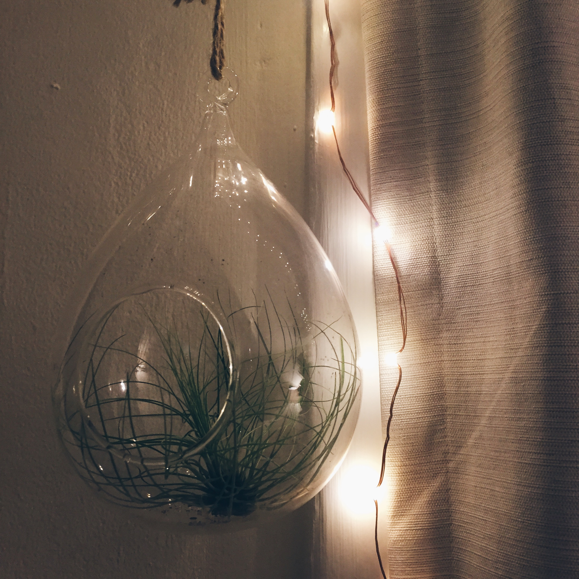 These fairy lights brighten up and give any room a warm touch. If you'd like, you can find them  here.
