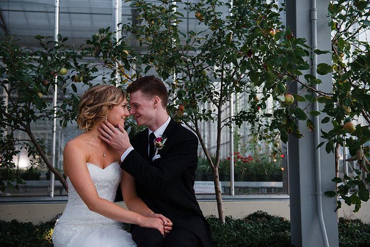 Hollett_Wedding_2016_DSC_7037.jpg