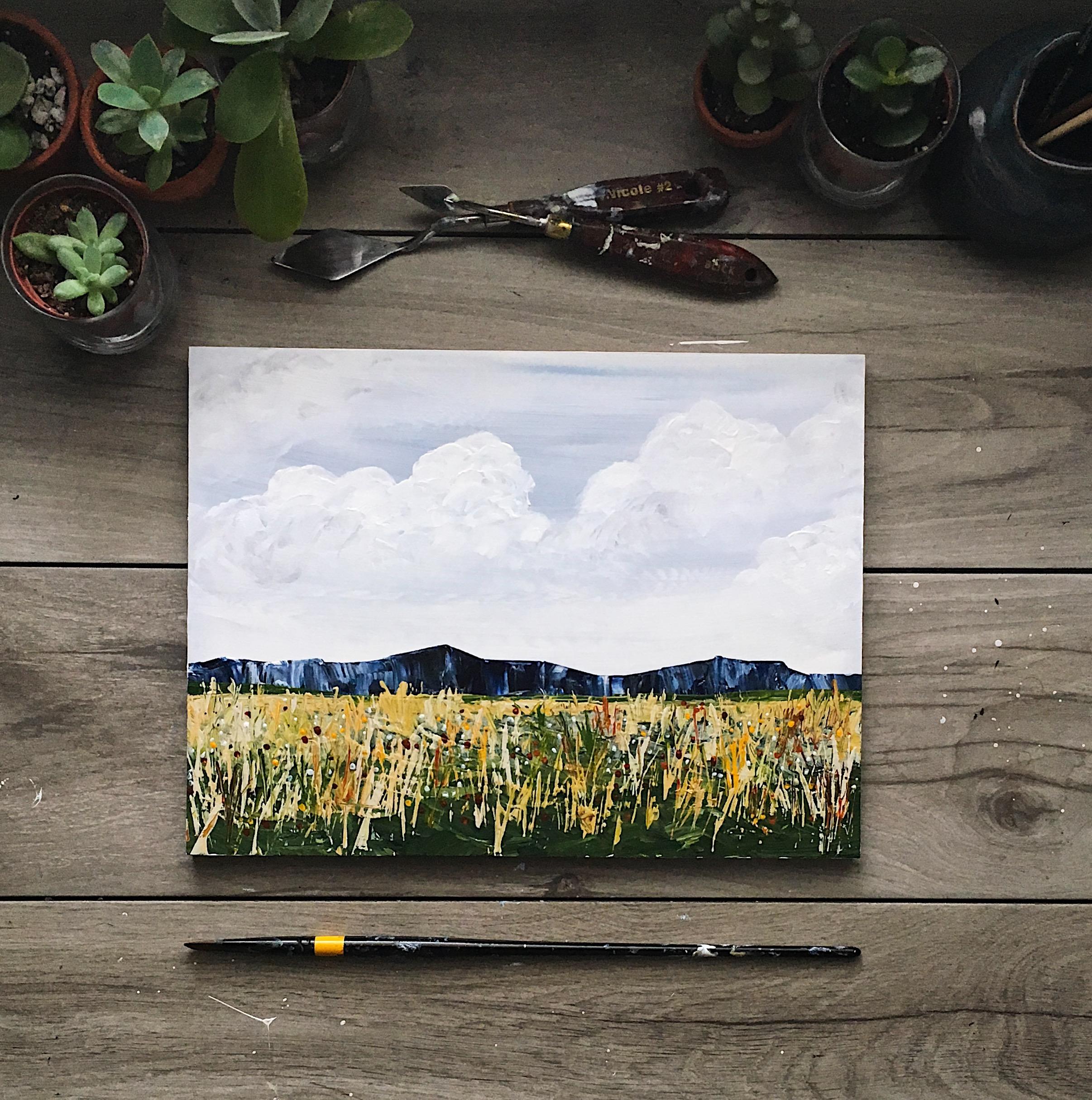 The Wildflowers Below, Summer 2017
