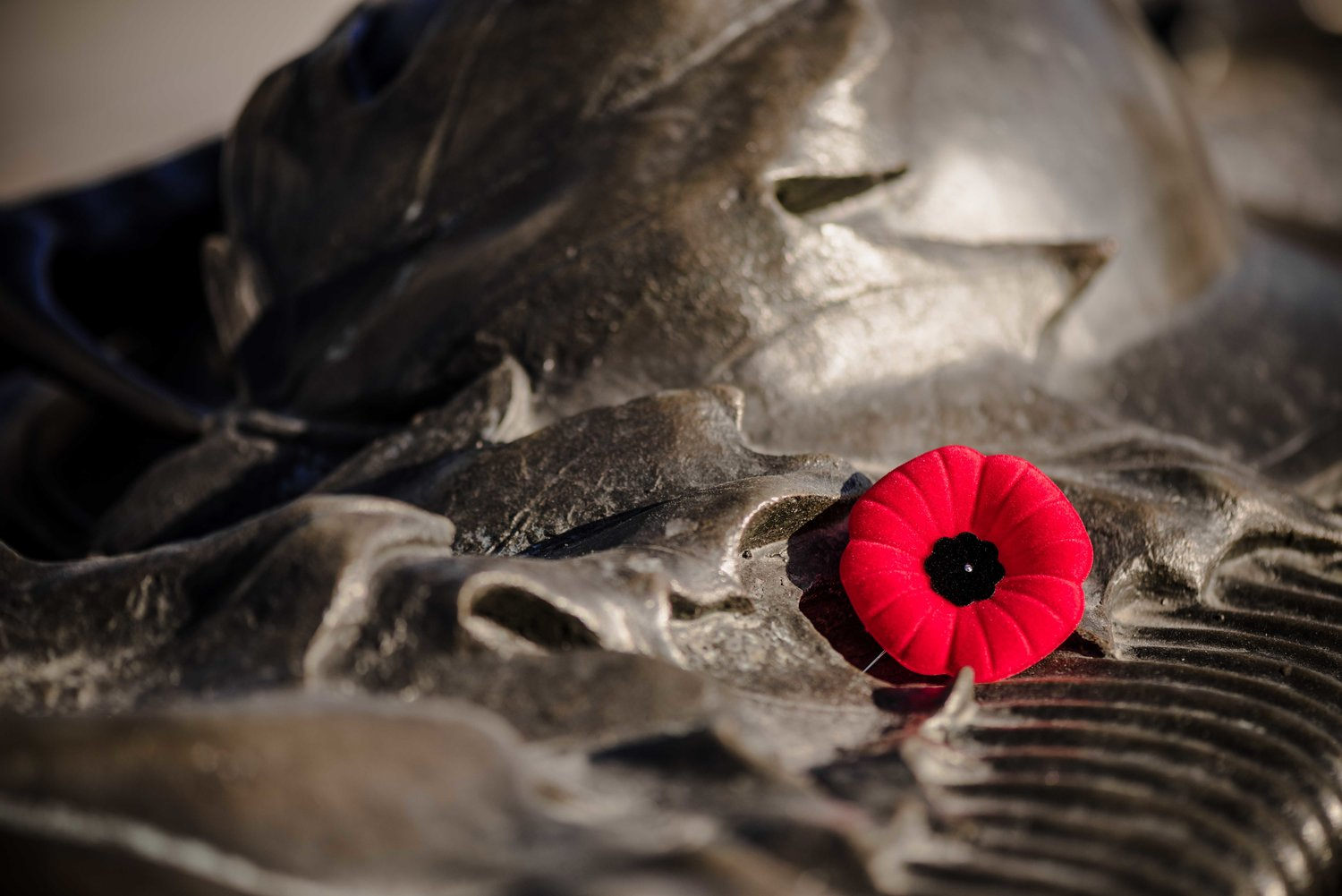 A poppy, laid atop the National War Memorial in Ottawa, Ontario.