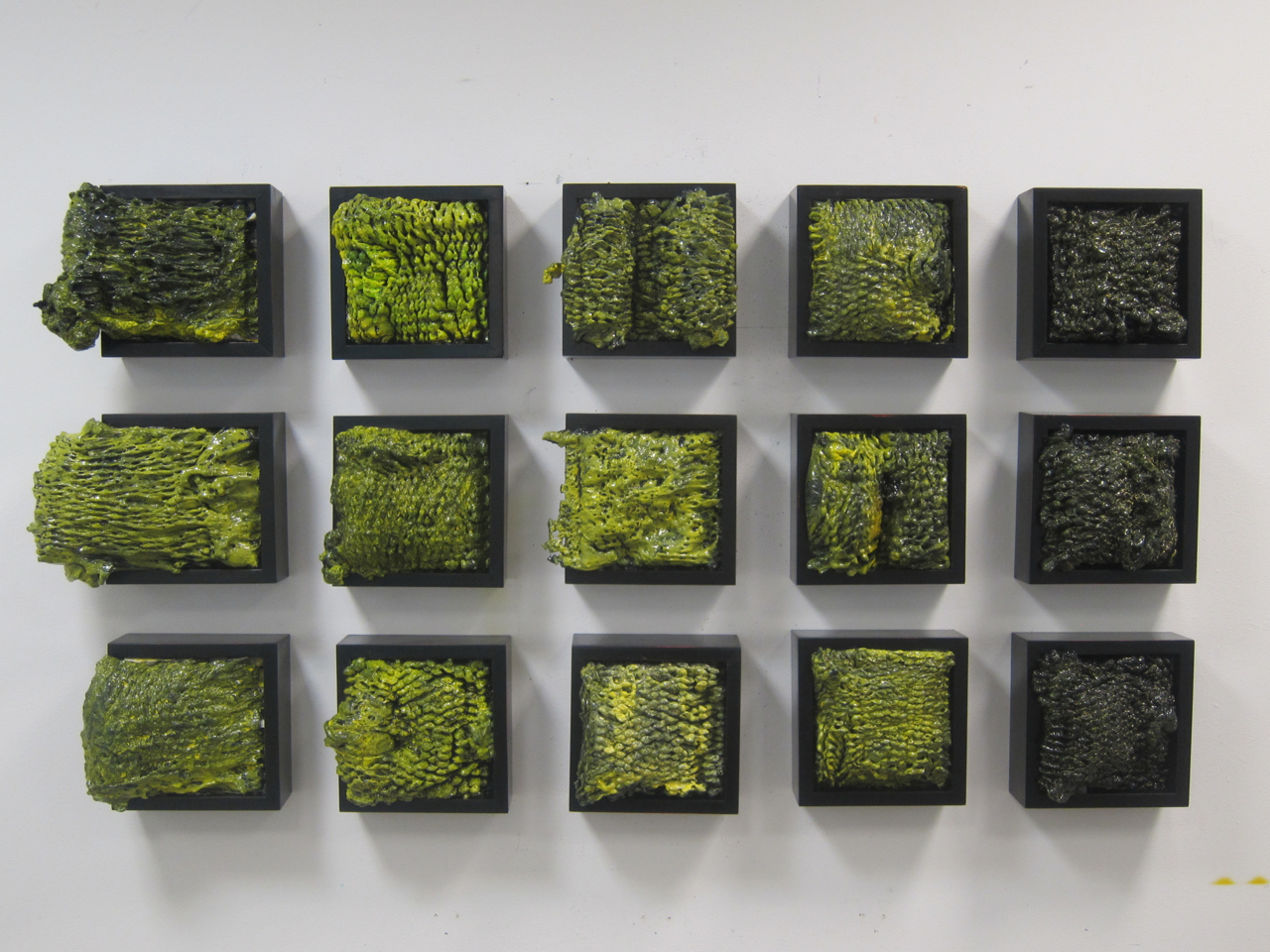 Colony,  Mixed media, 12 boxes, $600 for three | $1,650 for nine