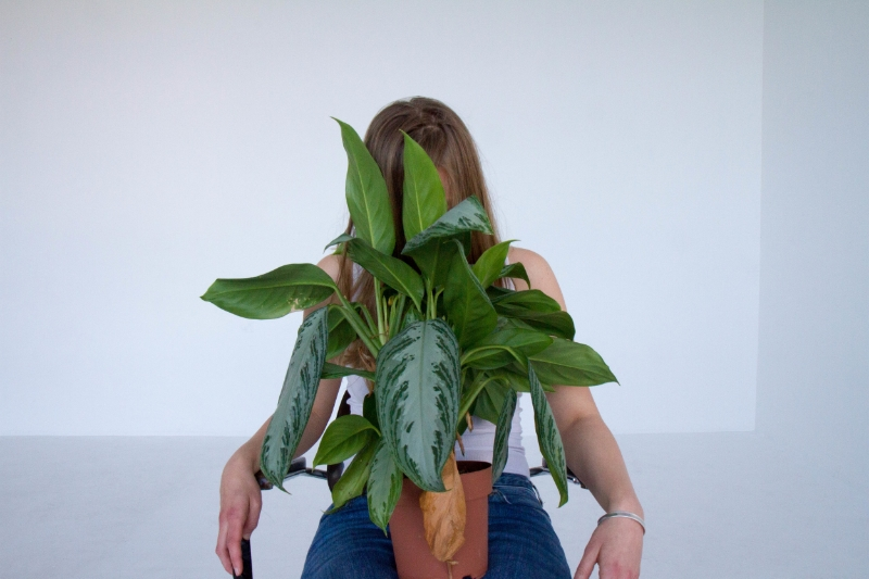with plant 2.jpg