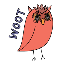 overthinking owl