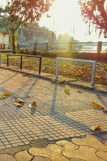The Manisha/Shahpura lake, here in Bhopal.Photo credit:Pratigya