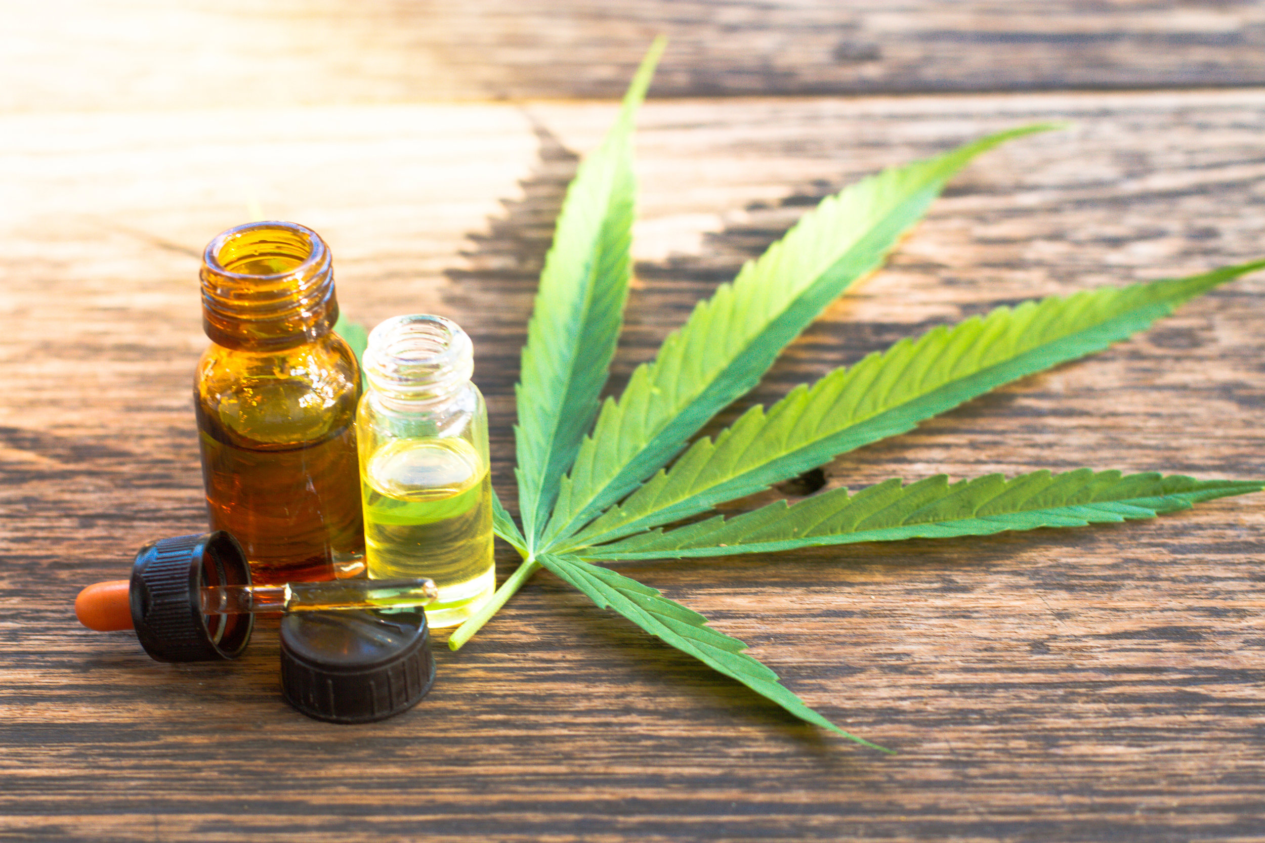 what does the farm bill mean for my cbd company.jpg