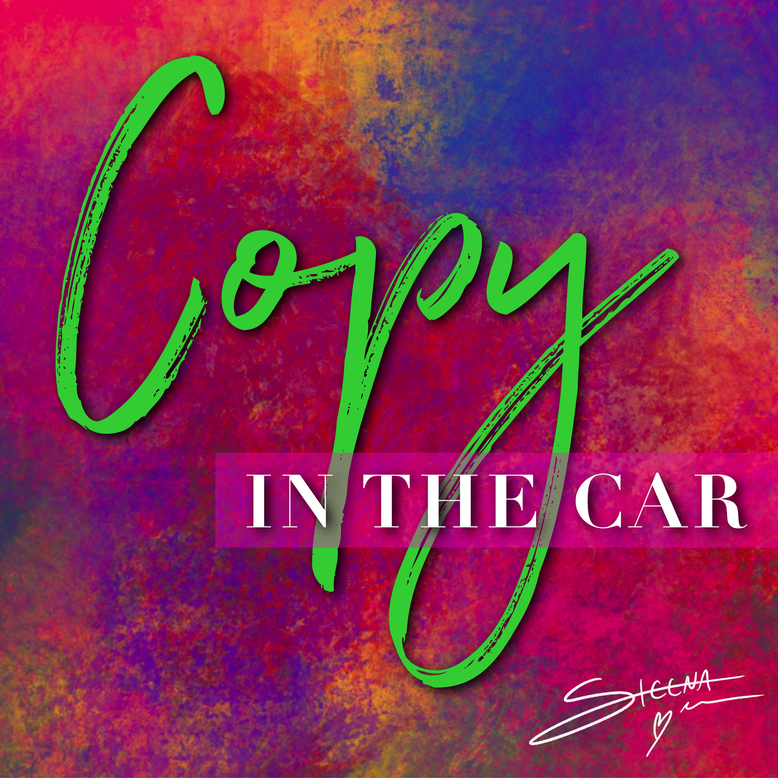 Copy in the Car Cover.jpeg