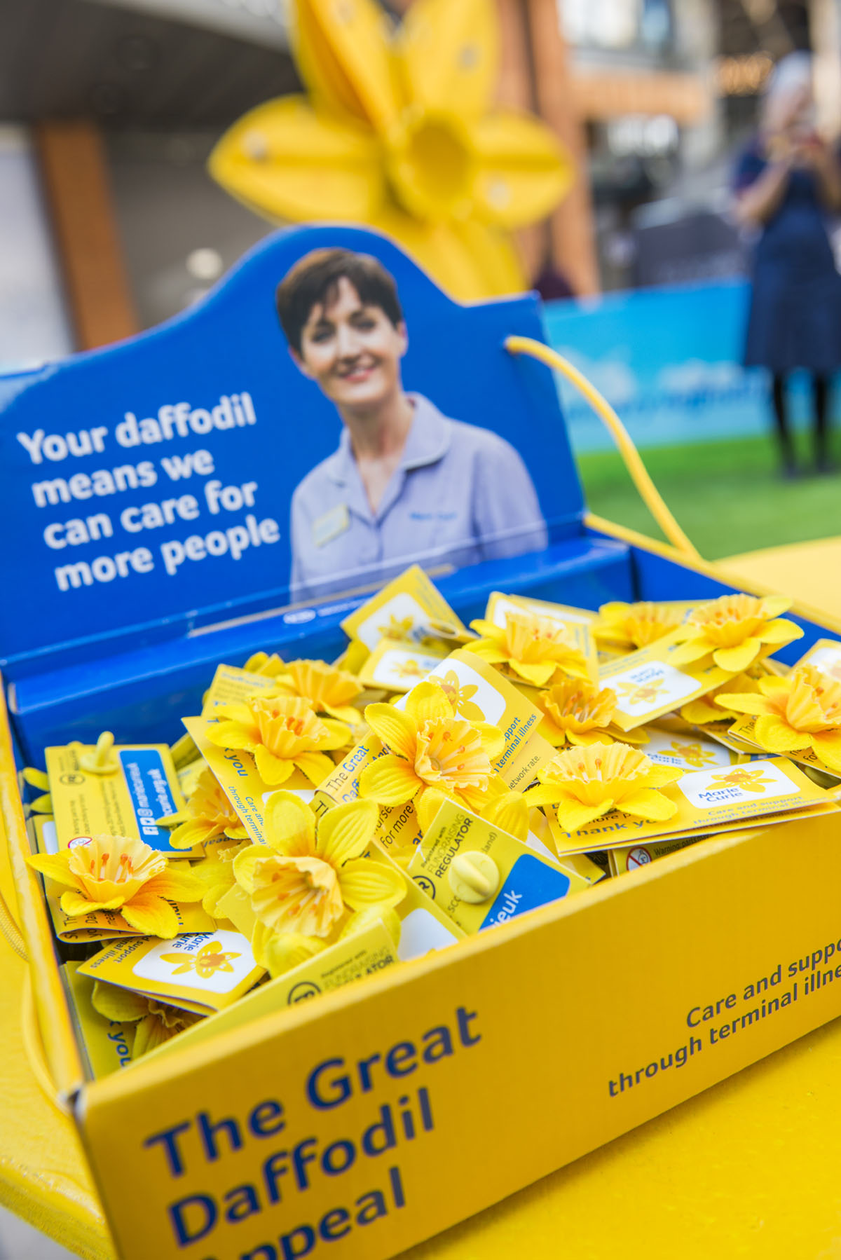 Marie Curie Daffodil Launch Photography