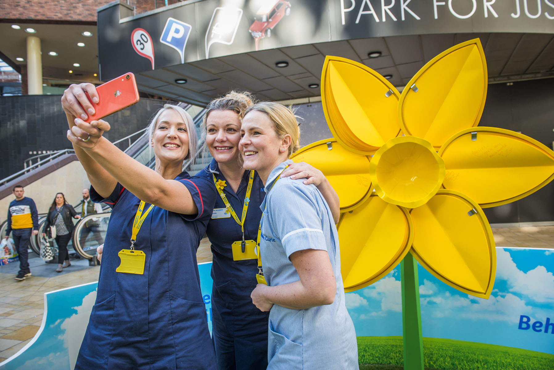 Marie Curie Daffodil Launch