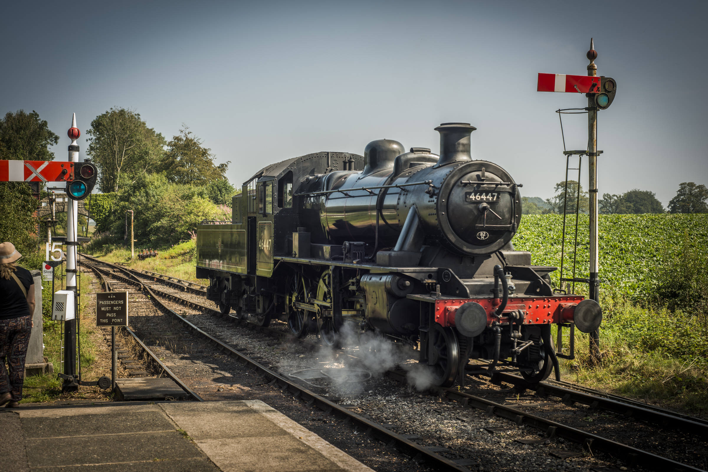 A steam train pulls into Cranmore Station on the East Somerset Line