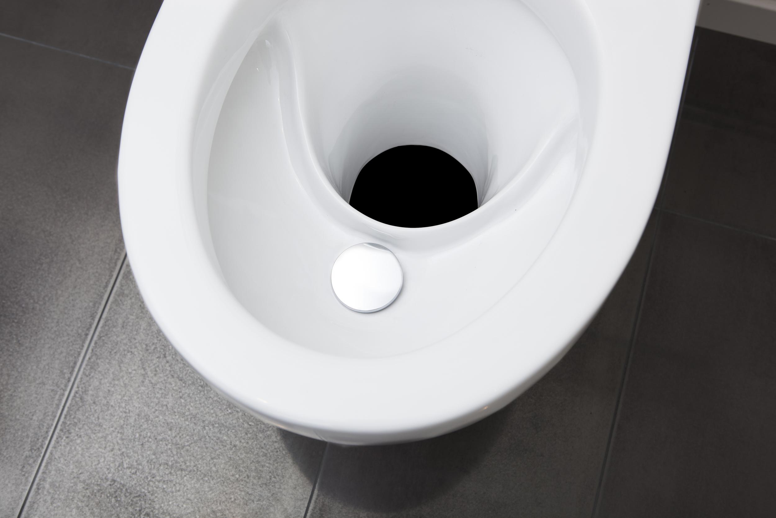 Fördelar att välja EcoDry torrtoalett! - Porslin det enda som gäller – EcoDry är den fräschaste och mest hållbara toaletten för fritdshus. Tack vare att den är gjord av porslin så håller den likt en vanlig toalett - i många år, och hålls mycket mer fräsch och hygienisk än plast och andra material.Urinsortering med spolning – Urinsorteringen gör så att fekalierna blir torra och luktfria. Nu finns också ett inbyggt vattenlås som är helt unikt. Vattenlåset gör det omöjligt för urindoft att tränga in i toalettutrymmet. Vatten spolas i urinskålen genom inkoppling av vatten eller genom att hälla vatten för hand.Osynligt luktfritt avfall – Med ett svart långt nedfallsrör så syns inte avfallet. Vi rekommenderar ett svart 200mm nedfallsrör av polyeten monteras i anpassad längd till en valfri behållare. Polyeten har yta som smuts ej fastnar på. På behållaren nedanför ska en fläkt monteras för avfallet ska torka ut ordentligt.Läs mer om EcoDry!