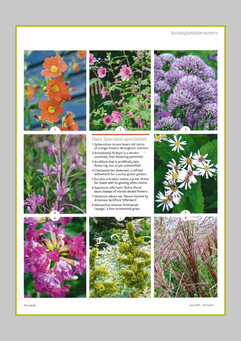 PS-PR-Garden_Page_5.jpg
