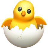 hatching-chick_1f423.png