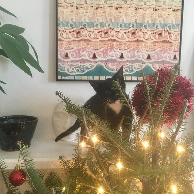 kiki discovers the mantle
