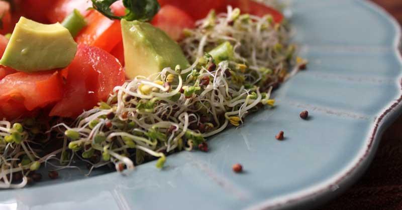 Broccoli-Sprout-Salad-FB