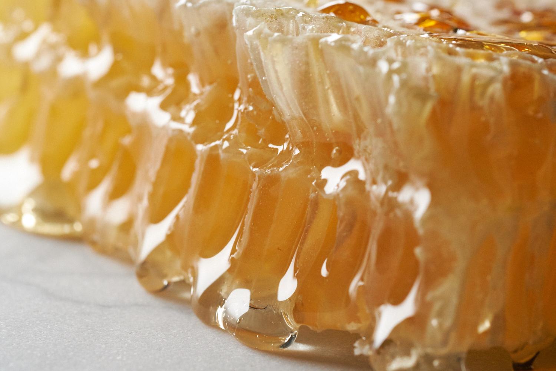 Honeycomb_0860.jpg