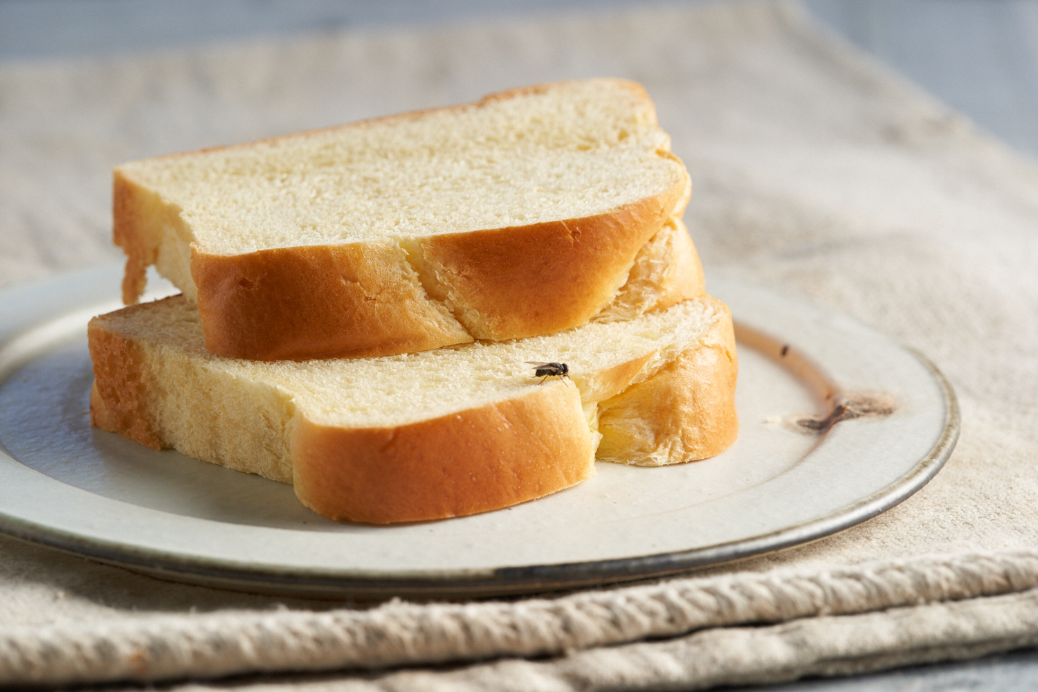 Grilled Cheese_0014.jpg